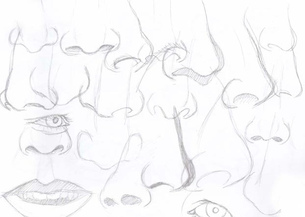 nose practice drawings