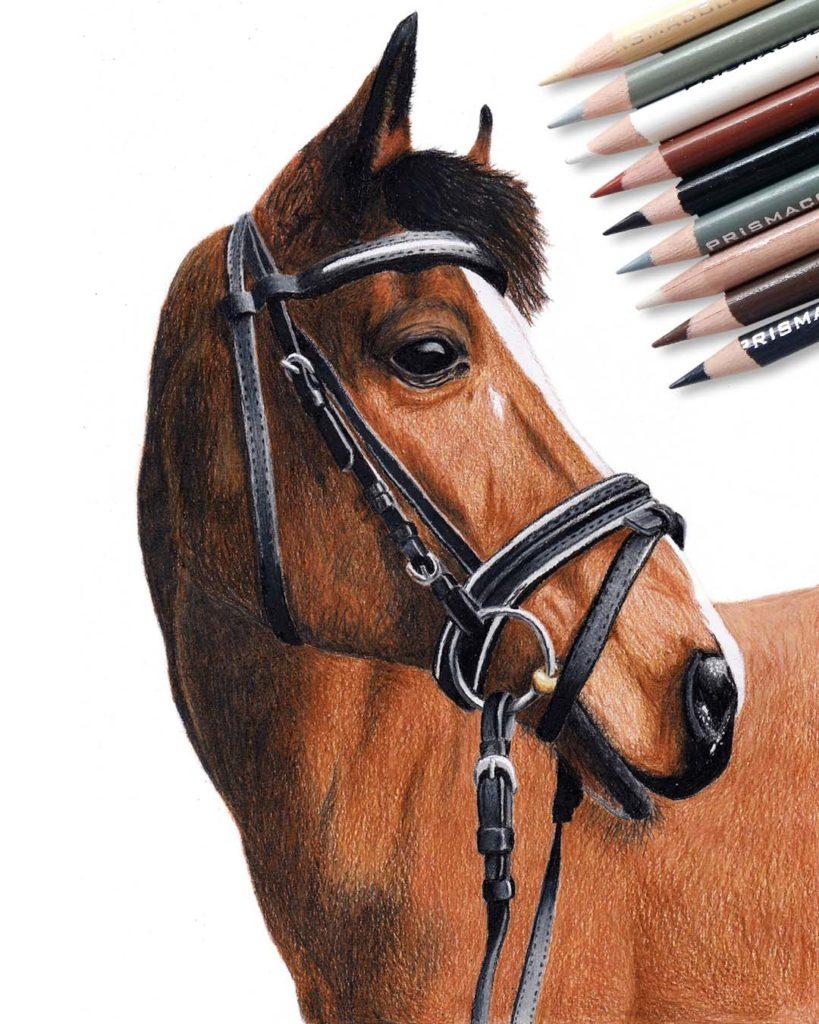 Horse drawing by Daniel Büsken