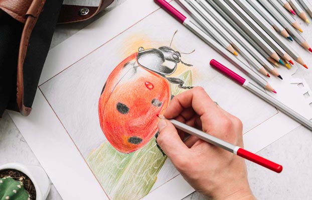 finishing projects, drawing a ladybug
