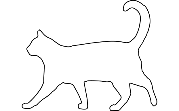outline drawing of a cat