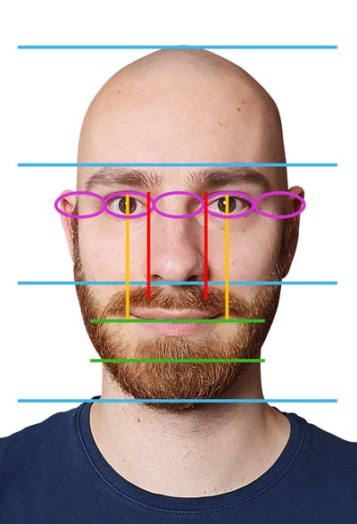 proportions of the face, real life example
